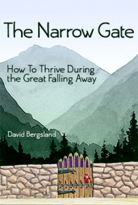 The Narrow Gate Cover