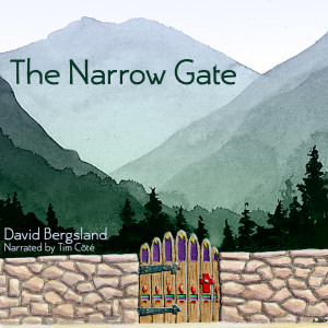 The Narrow Gate audio book
